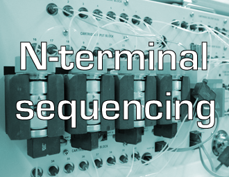 N-terminal sequencing services
